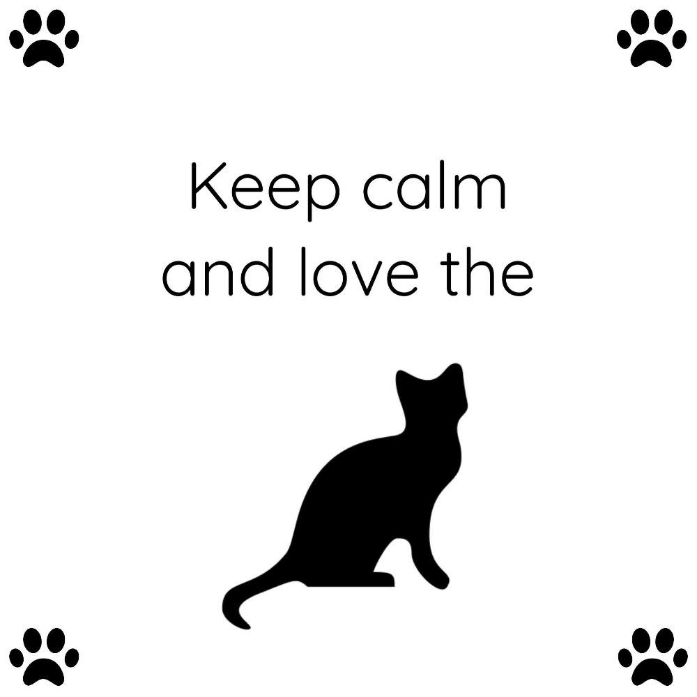 Keep calm and love the cat