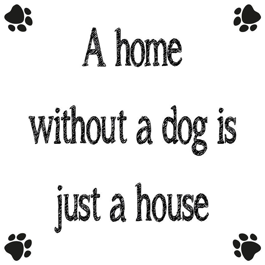 A home without a dog is just a house (wit)