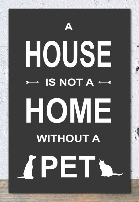 A house is not a home without a pet (grijs) - Tekstbord