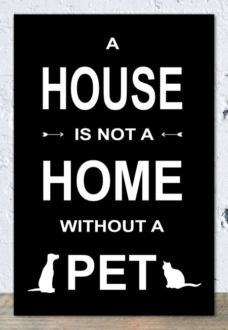 A house is not a home without a pet (zwart) - Tekstbord